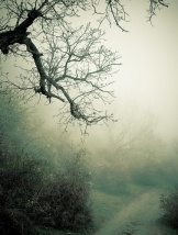 haunting road Depositphotos_23990435_s-2015