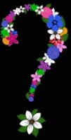 Q mark flowers