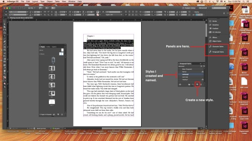 Workspace in InDesign with Paragraph Styles panel open