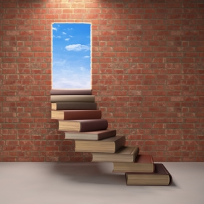 Books leading to a door in a brick wall