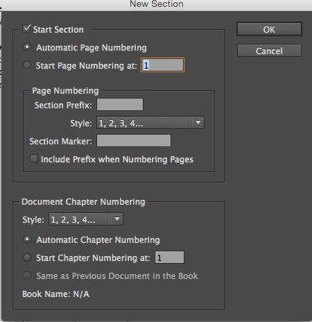 New Section Dialogue Box in InDesign