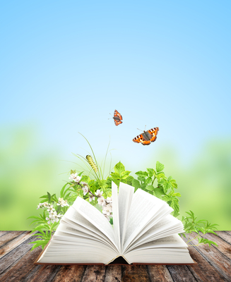 Book publishing success--butterflies hovering over an open book